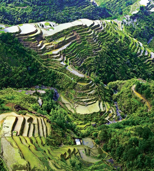 Rice Terraces  Philippines Tourism