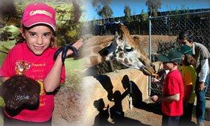 The National Zoo and Aquarium