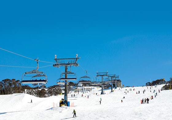 Perisher is the largest ski resort in Australia