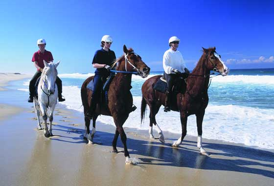 Stockton Beach Horse Riding