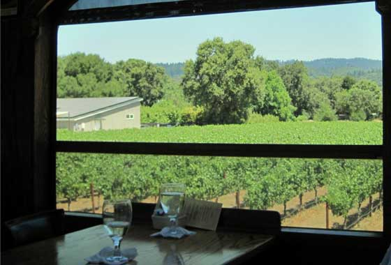 wine country blog
