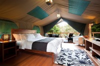 Lane Cove Glamping