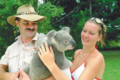 Pat a Koala at Port Macquarie