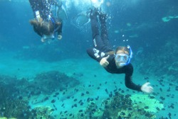 Kena underwater with marine life on the Gold Coast