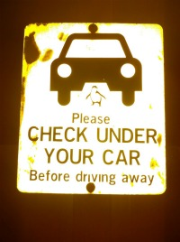 Check Under Your Car!