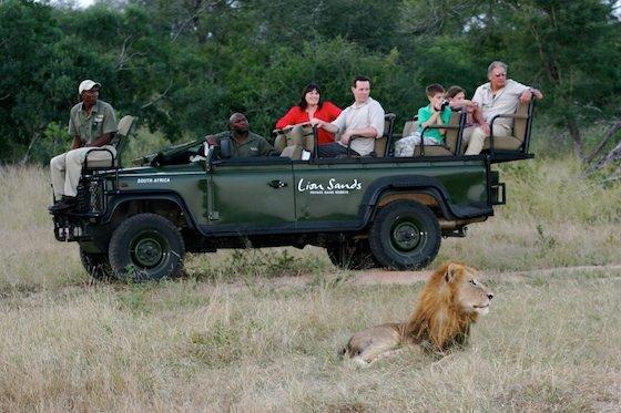 South Africa Safari Perkins Family