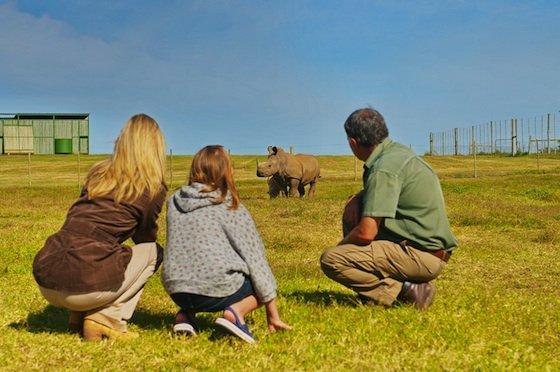 Kids on Safari - Shamwari Game Reserve