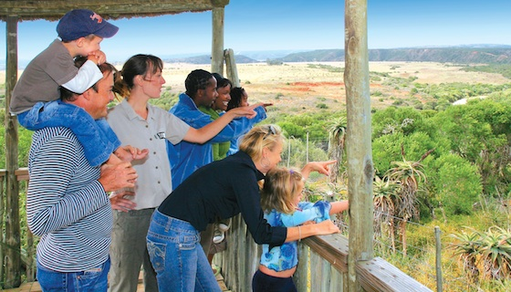 Kids on Safari - Shamwari Game Reserve