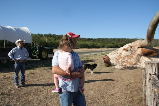 Kids and cattle in Texas