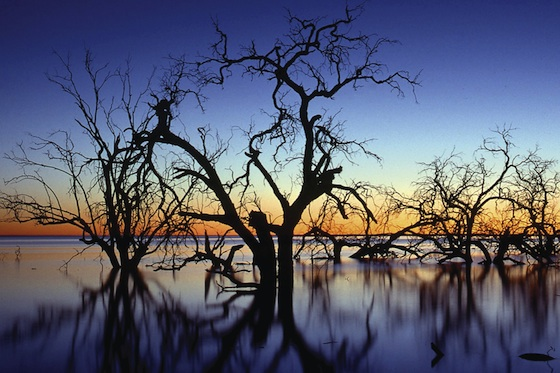 The Magnificent Sunset over Menindee Lake in Kinchega National Park, Western NSW