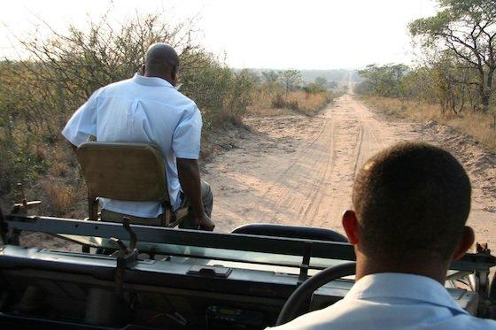Jeep on safari kruger 560