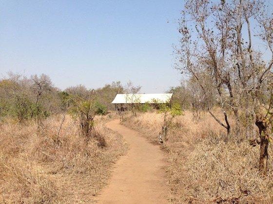 Kruger shed 560