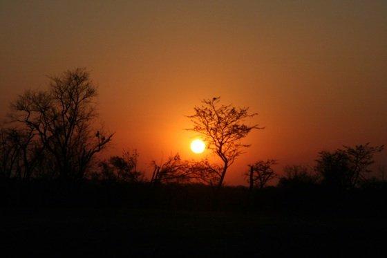 Sunset Kruger 560
