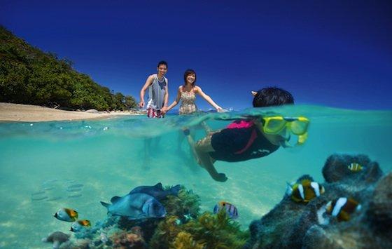 50 fitzroy island snorkelling