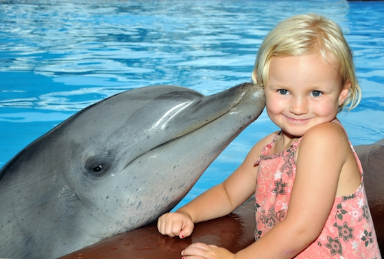 Dolphin Kiss - Child Female 01