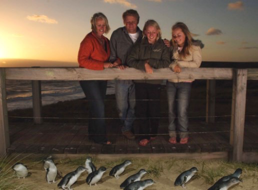 Family with penguins