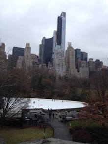 Bella Central Park w view