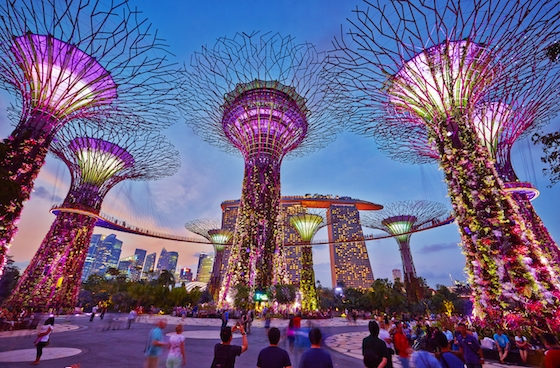 Gardens by the Bay Image: Singapore Tourism
