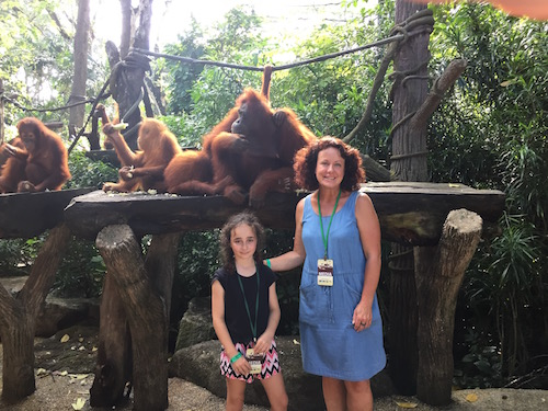THREE - breakfast with the orangutans