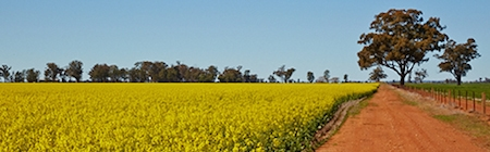 Coolamon region, East Riverina Image: Destination NSW