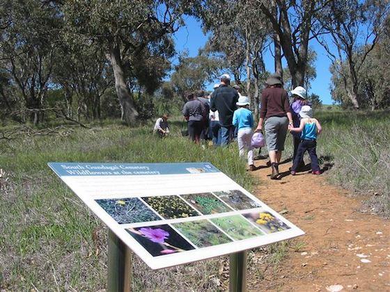 South Gundagai Woodlands Walk Image: Destination NSW