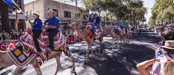 Tamworth Country Music Festival parade Image: Murray Vanderveer/Destination NSW