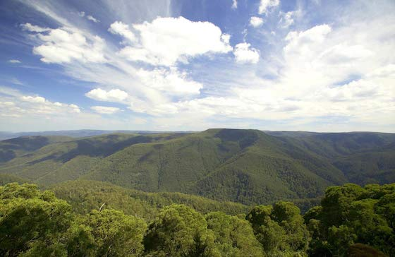 View from Thunderbolt's Lookout, Barrington Tops National Park Image: nationalparksnsw.gov.au/Hamilton Lund