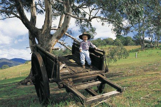 At Rocky Hall, near Wyndham, on the Sapphire Coast Image: North Sullivan/Destination NSW