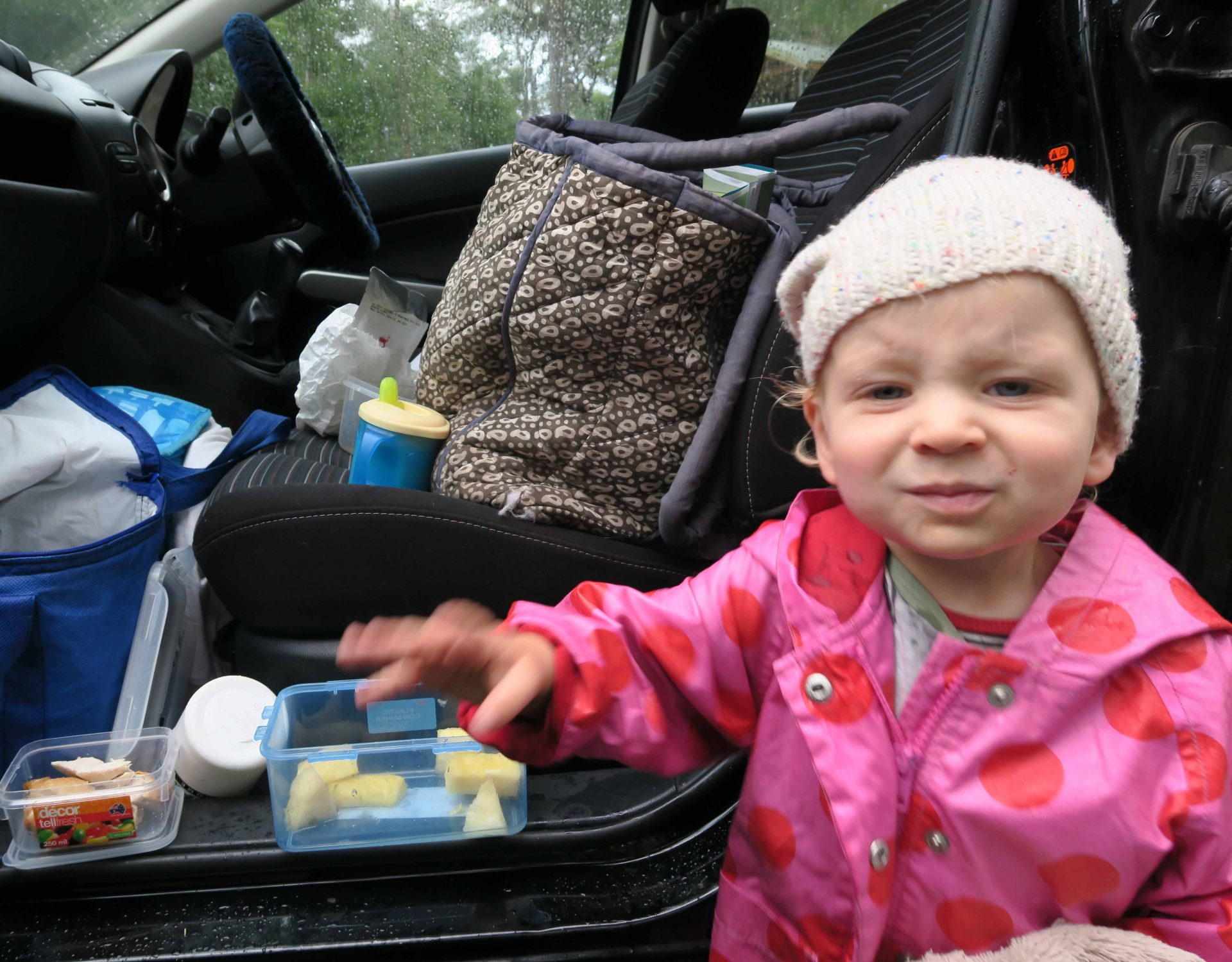 toddler-by-car_0251