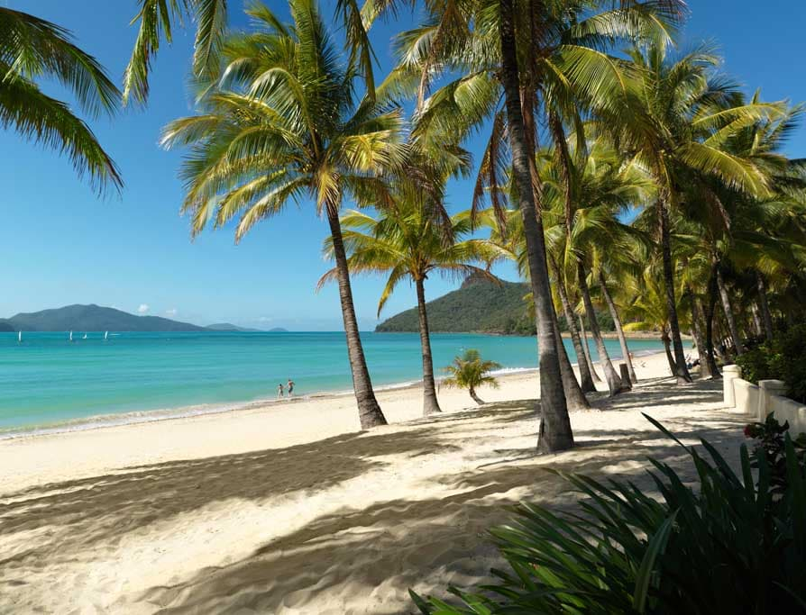 Hamilton Island Cats Eye Beach