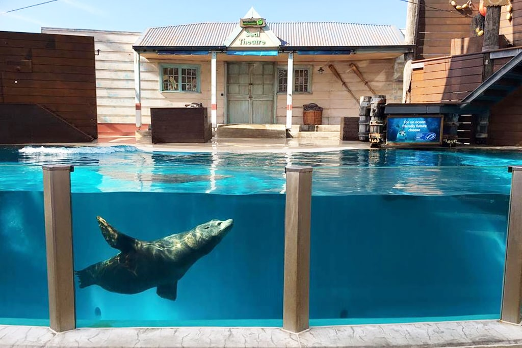 Taronga Zoo: Junior Keeper for a Day Experience