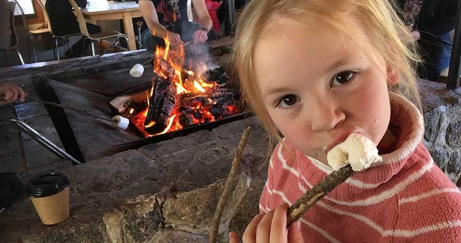 Roasting marshmallows Canberra