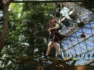 Boy in harness follows ropes course inside Cairns Dome and Zoom