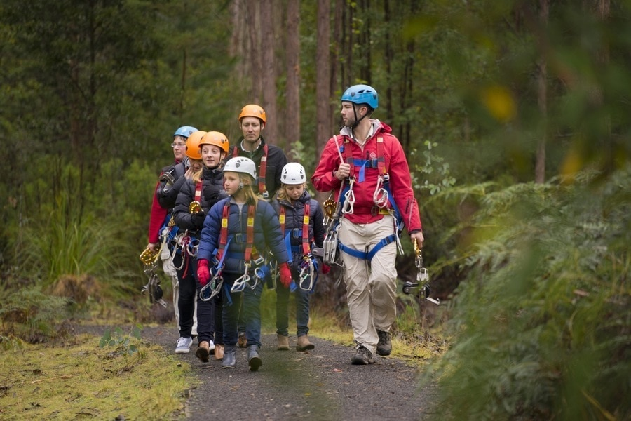 A group of kids walk through forest wearing harnesses ready to zipline