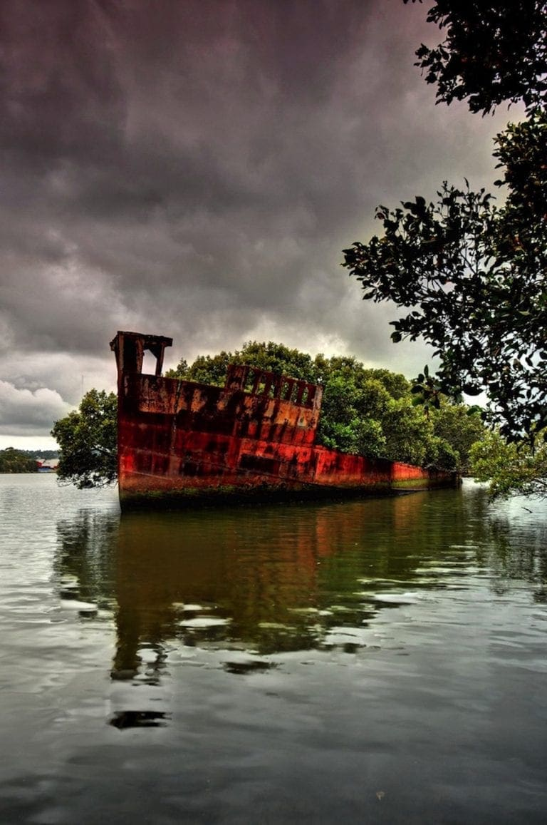 unique view from homebush bay in sydney