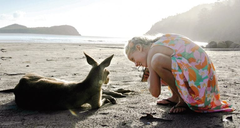 FEATURE Meet the locals at Cape Hillsborough Image Tourism and Events Queensland