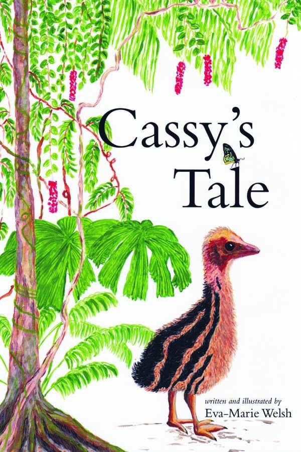 cassys tale book cover