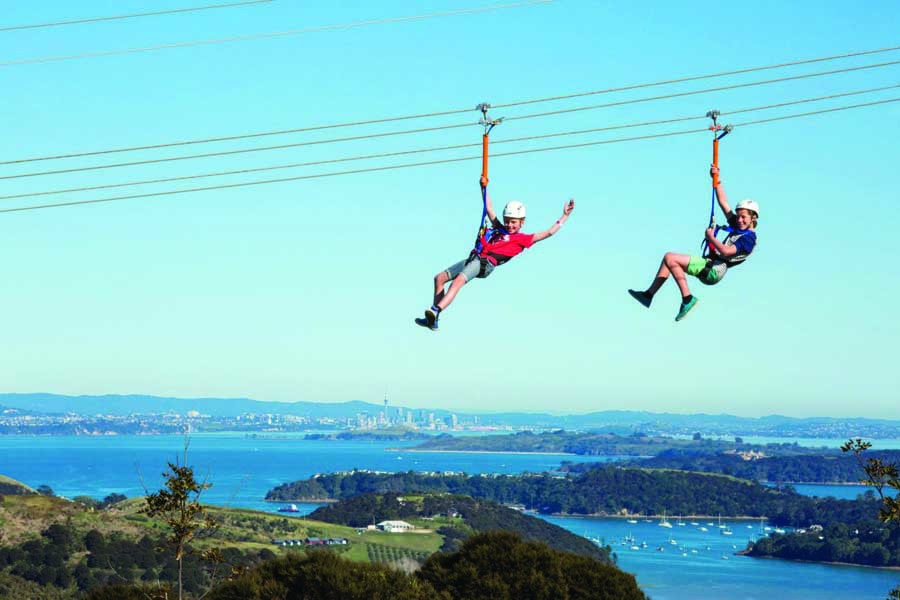 enjoy the view from waiheke island with ecozip adventures
