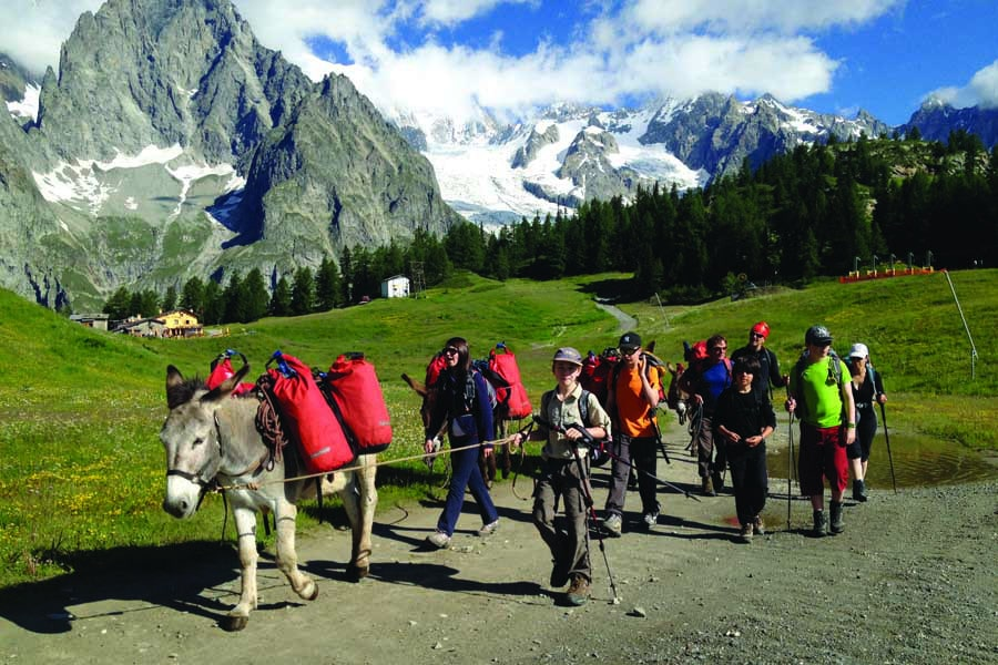 families walking with donkeys beneath mont blanc in france. image utracks