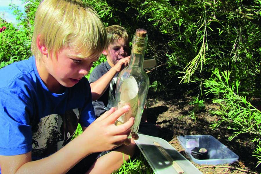 kids can go on a treasure hunt at fox creek wines