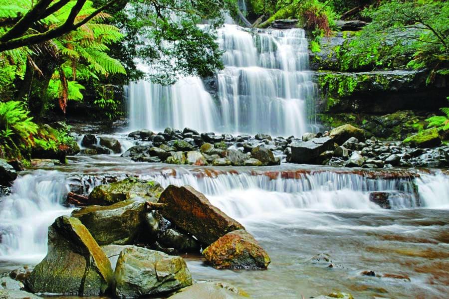liffey falls. image tourism tasmania brian dullaghan