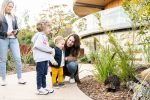 feature meet an echidna during a stay at taronga wildlife retreat