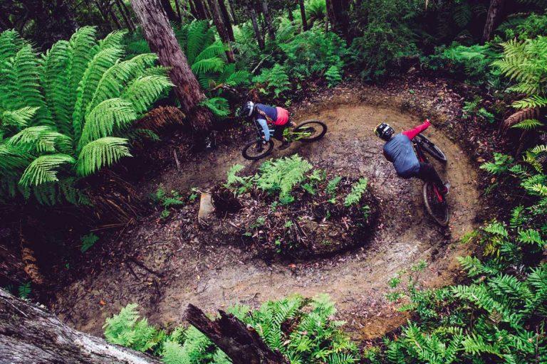 feature riders in maydena bike park. image stu gibson