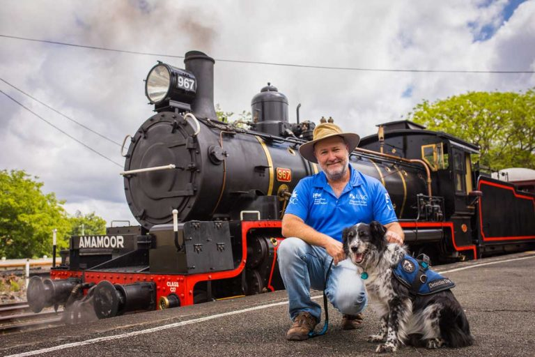 mary valley rattler steam train welcomes pets