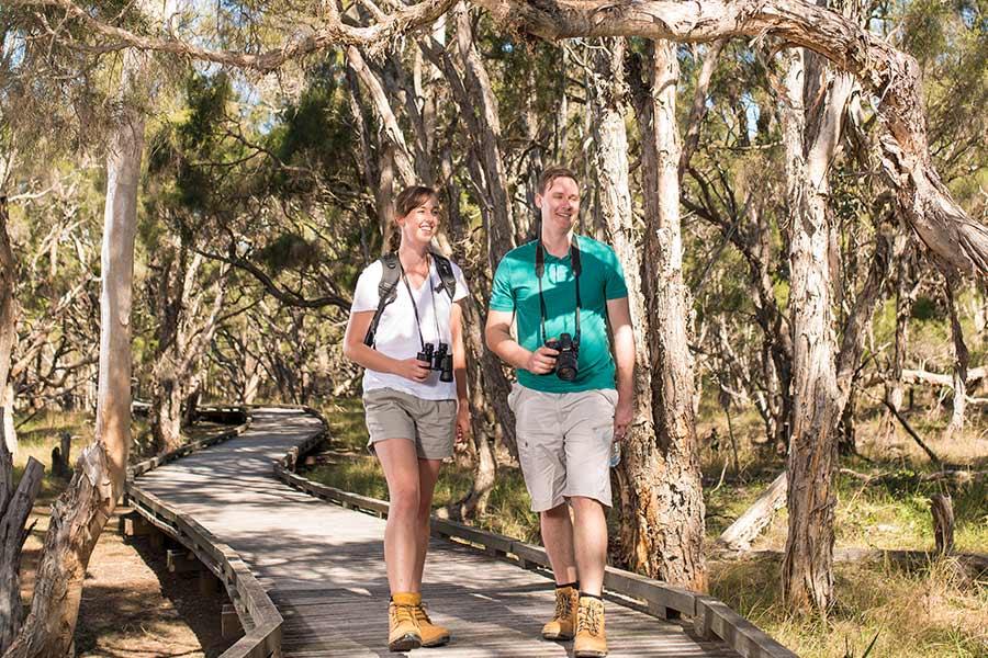 ipswich purga nature reserve