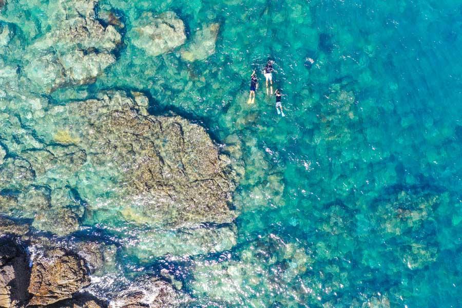 snorkelling around great keppel island