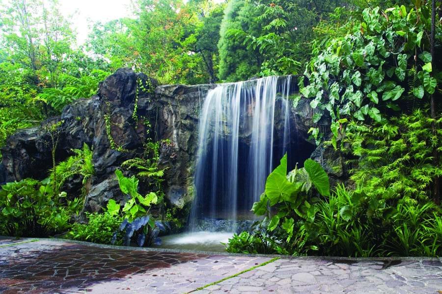 a waterfall in singapore botanic gardens