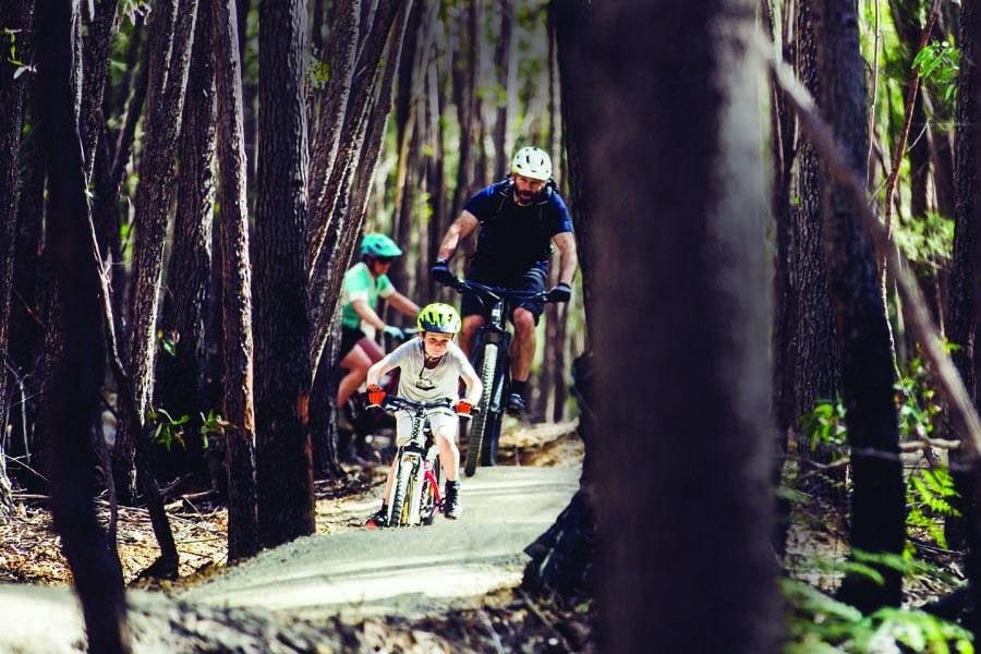 explore the mountain biking trails in st helens. image j. da seymour photomedia