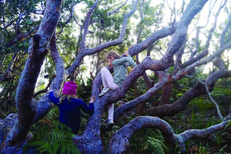 kids can enjoy a range of outdoor experiences with tomaree coastal adventures