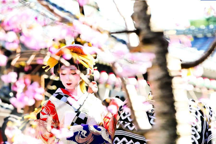 a geisha at edo wonderland nikko edomura - visit in Japan with kids
